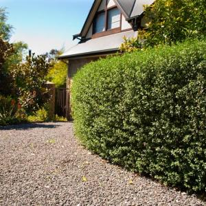 Large garden landscaping project - Warrandyte
